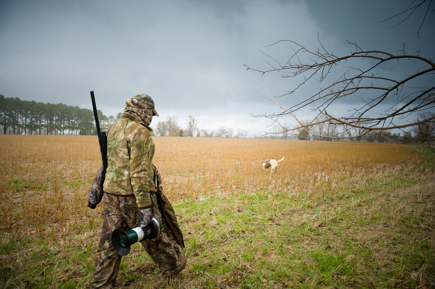 Hunting for waterfowl on the Eastern Shore of Maryland: a hunter walks across a field on the way to the hunting blind under darkened skies