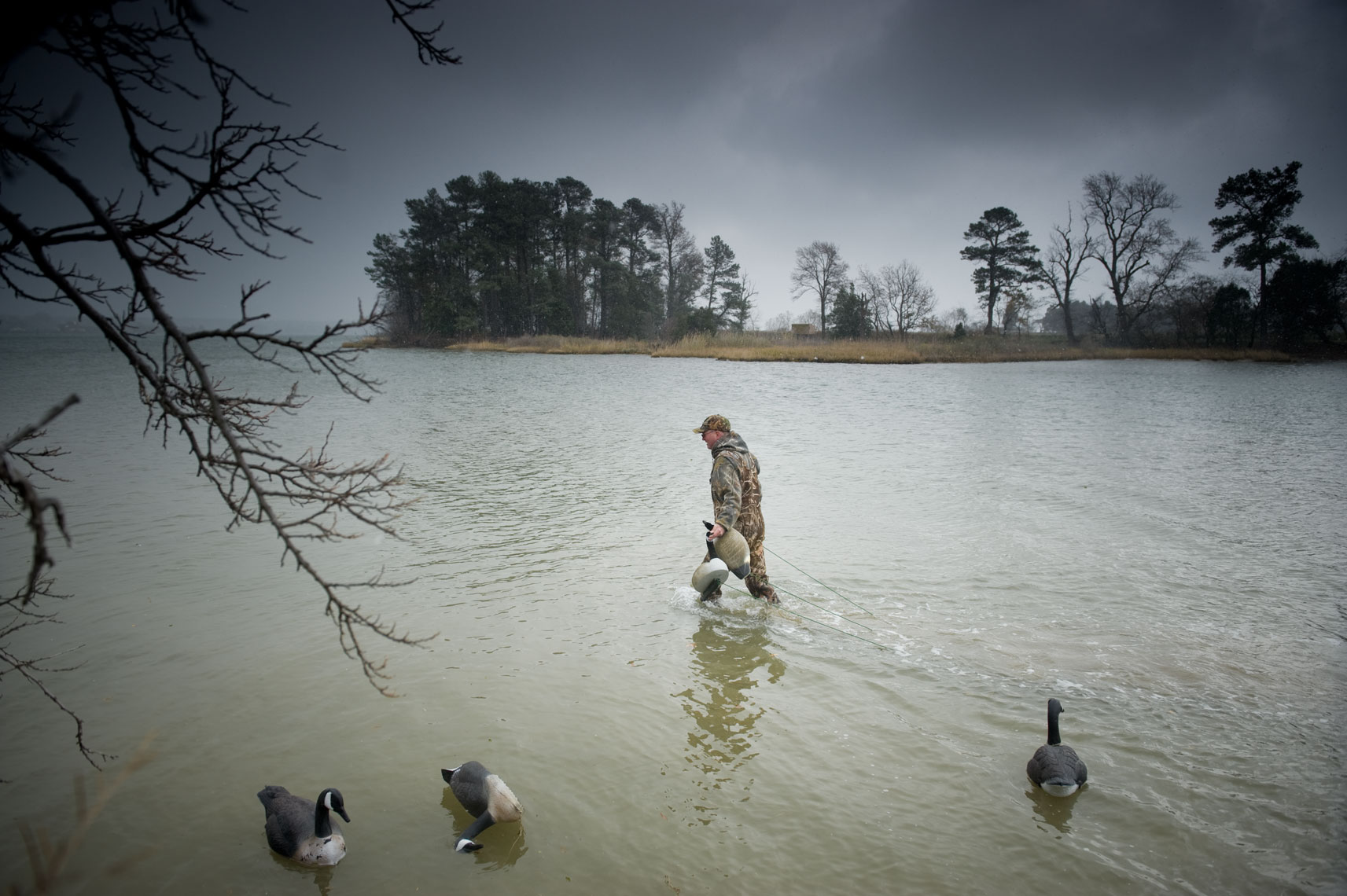 Hunting for waterfowl on the Eastern Shore of Maryland: decoys are placed out in the water
