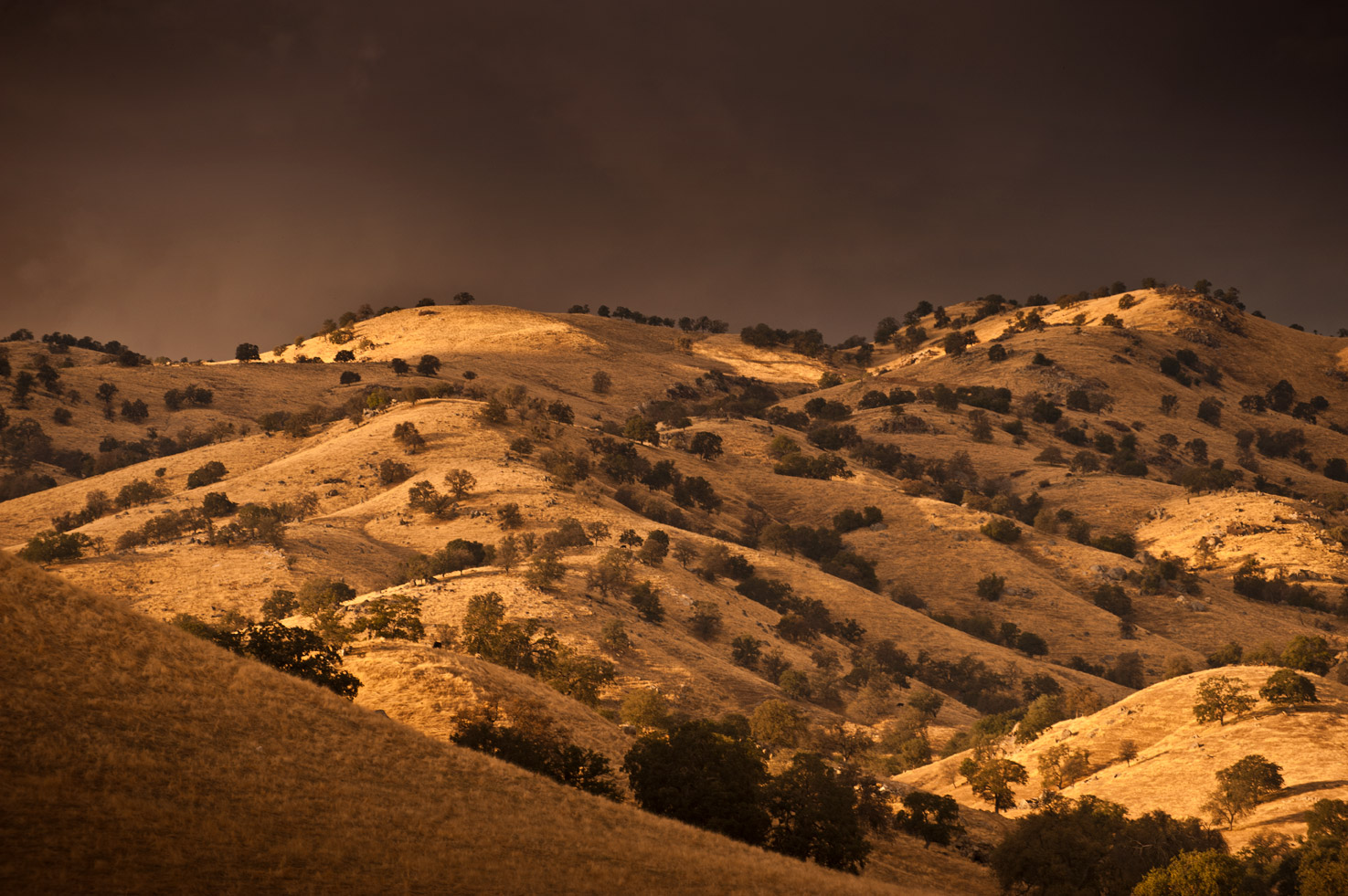 Golden sunlight dapples the hills around the Yokohl Valley, California