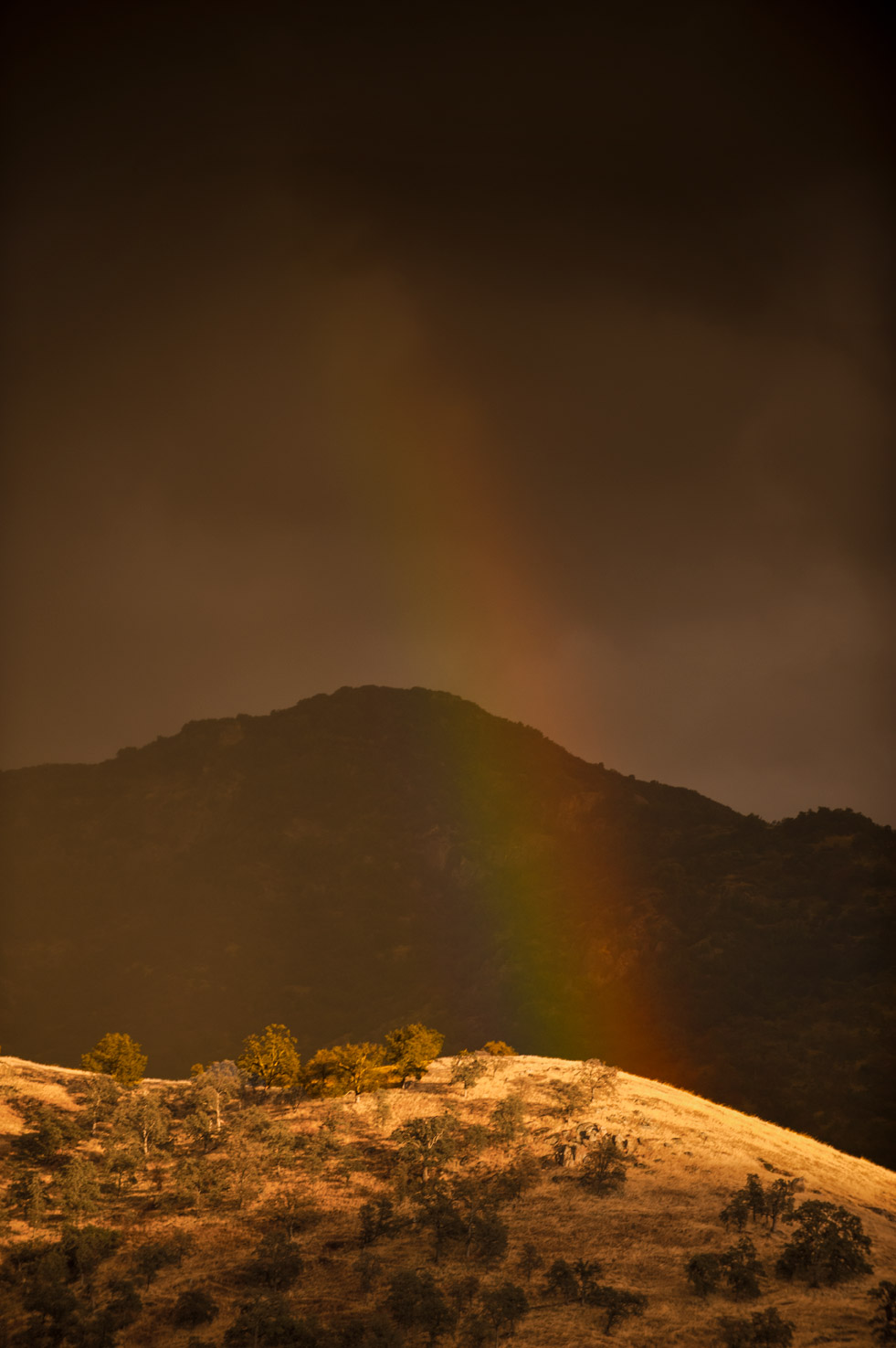 A rainbow lands on a sunny hilltop in the middle of a storm in the Yokohl Valley, California