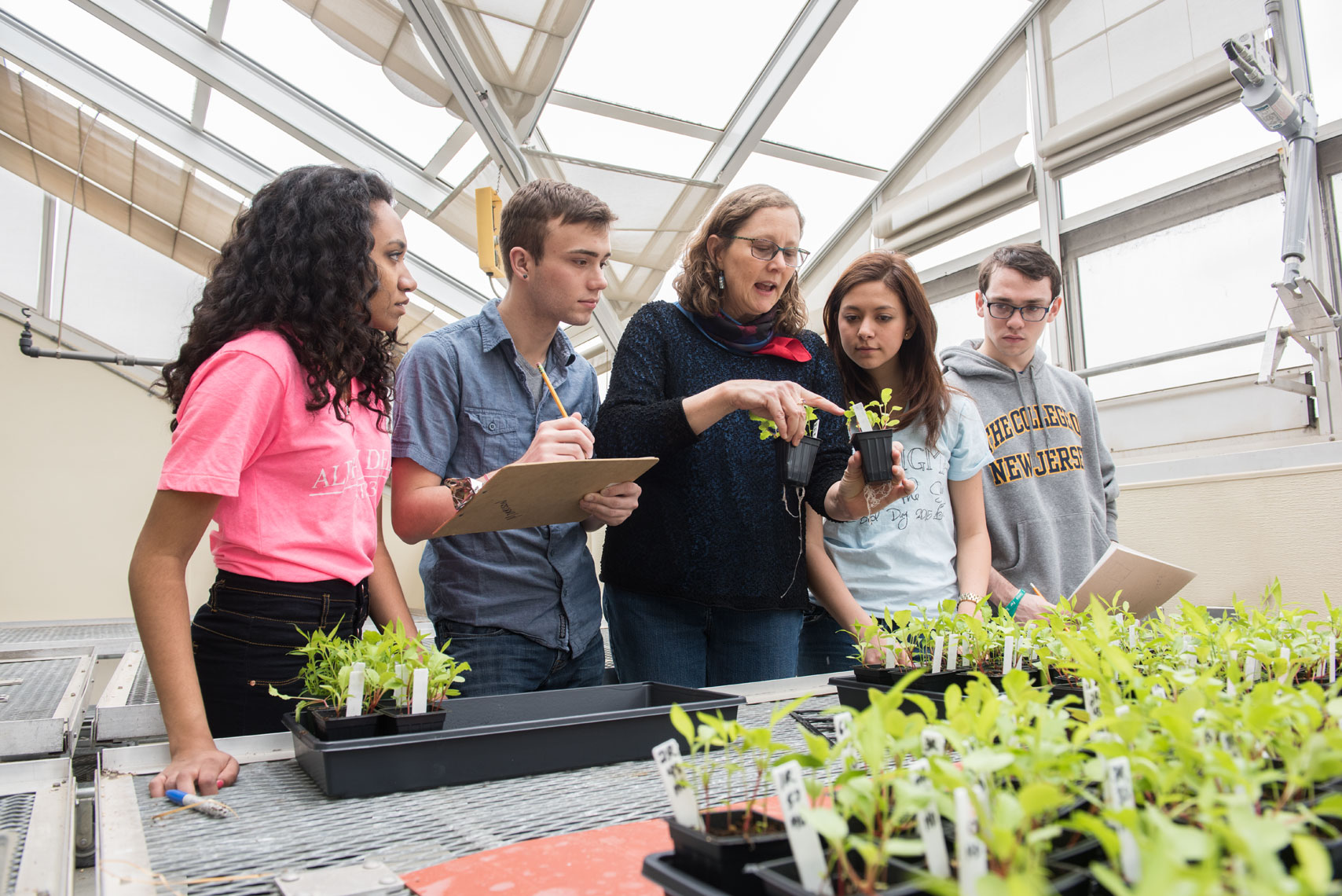 Students from the College of New Jersey gather around a plant biology professor in a greenhouse